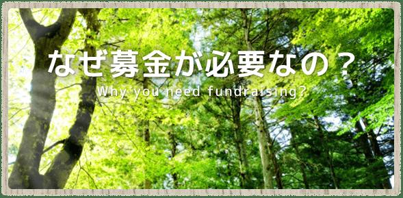 なぜ募金が必要なの? - Why you need fundraising?