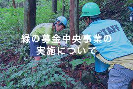 img_green_02