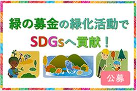 img_green_20201117c