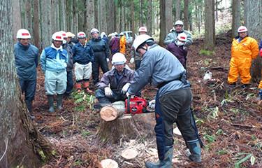 No.26 自伐林業方式と木質バイオマスを活用した津波被災地再生