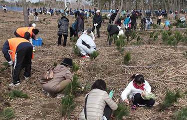 No.54 さんむ植樹祭