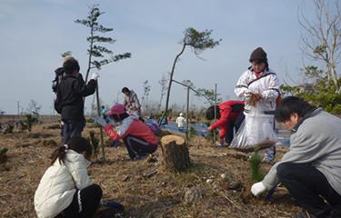 No.79 さんむ災害復旧植樹祭