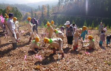 No.92 「被災地に緑と心のふれあい森林づくり事業