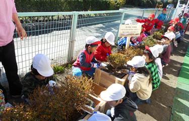 No.97 第三次緑と木を通じた子供たちのふれあい事業
