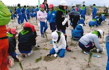 No.99 平成27年東日本大震災復興事業(鹿島灘海岸防災林復旧)