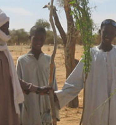 アフリカグリーンベルト造成事業