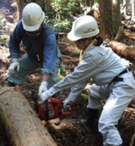ボランティアによる「市民の森」づくり事業