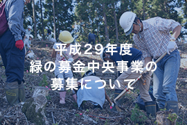 img_toposhirase170215