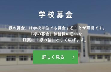 学校募金:「緑の募金」は学校単位でも募金することが可能です。「緑の募金」は皆様の思いを確実に「緑の輪」として広げます。