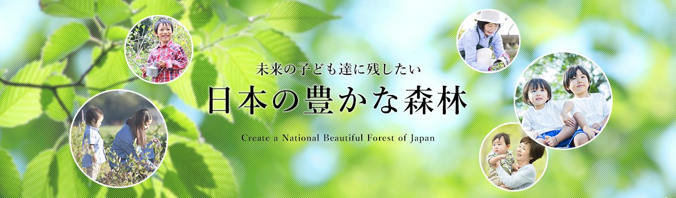 未来の子供たちに残したい日本の豊かな森林