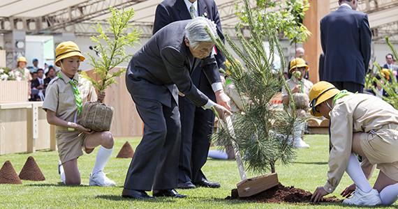 写真:全国植樹祭・全国育樹祭