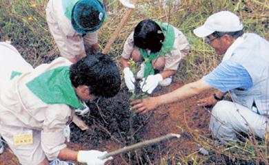 緑の少年団による植林活動