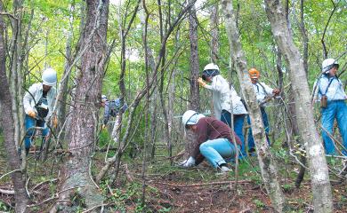 企業による森林整備ボランティア活動