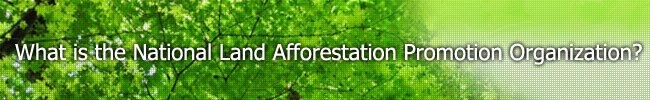 What is the National Land Afforestation Promotion Organization ?